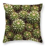 Pincushion Cactus Throw Pillow
