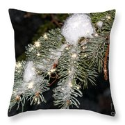 Pine Branch With Ice And Stars Throw Pillow