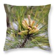 Pine Catkins Throw Pillow