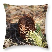 Pine Cone And Small Branch Throw Pillow