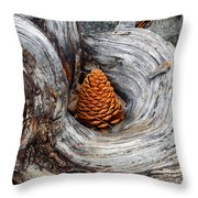 Pine Cone In A Knot  Throw Pillow