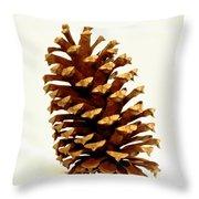 Pine Cone On White Throw Pillow