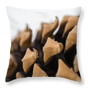 Pine Cone Study 2 Throw Pillow