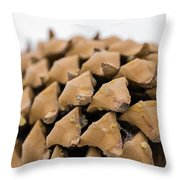 Pine Cone Study 4 Throw Pillow