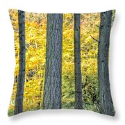 Pine Forest In The Autumn Throw Pillow