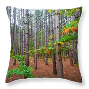 Pine Forest With Autumn Color Throw Pillow