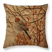 Pine Grosbeak Throw Pillow by Tammy  Taylor