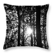 Pine Grove I Throw Pillow