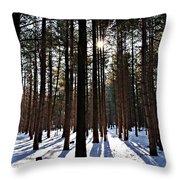 Pine Grove Vii Throw Pillow