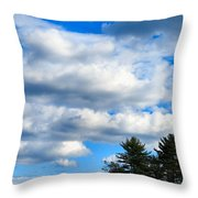 Pine Isand Throw Pillow
