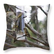 Pine Siskins In Flight Throw Pillow
