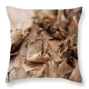 Pine Sprig Throw Pillow