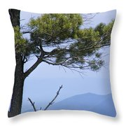 Pine Tree Along The Blue Ridge Parkway Throw Pillow