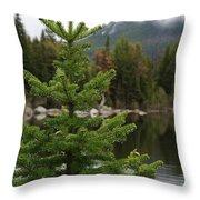 Pine Tree And Rain Drops Throw Pillow
