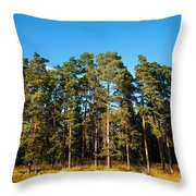 Pine Trees Of Valaam Island Throw Pillow