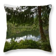 Pine Trees Over Starvation Lake Throw Pillow