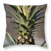Pineapple Express Throw Pillow