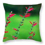 Pineapple Sage Throw Pillow