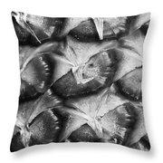 Pineapple Skin Throw Pillow