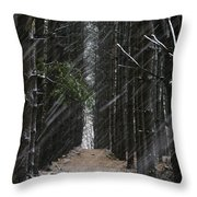 Pines In Snow Throw Pillow