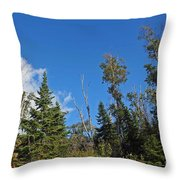 Pines In The Sky Throw Pillow