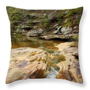 Piney Creek In Southern Illinois Throw Pillow