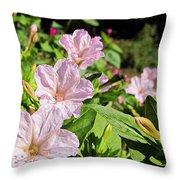 Pink 4 O'clocks Throw Pillow