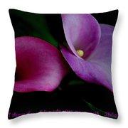 Pink An Purple Calla Lilys Throw Pillow