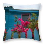 Pink And Blue House Throw Pillow