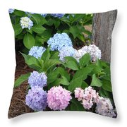 Pink And Blue Hydrangea Throw Pillow