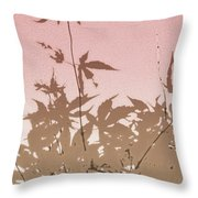 Pink And Brown Haiku Throw Pillow