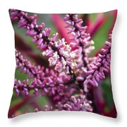 Pink And Cream Cluster Bloom Throw Pillow