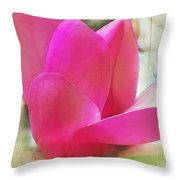 Pink And Green Throw Pillow