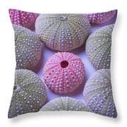 Pink And Green Urchins Throw Pillow
