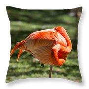 Pink And Orange Ball Throw Pillow
