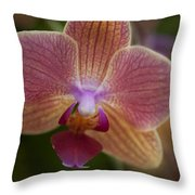 Pink And Orange Orchid Throw Pillow