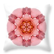 Pink And Orange Rose Iv Flower Mandala White Throw Pillow
