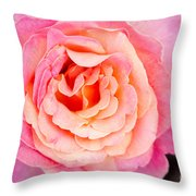 Pink And Peach Rose Flower Throw Pillow