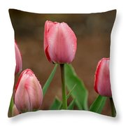 Pink And Perfect Throw Pillow