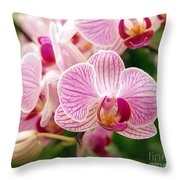 Pink And Purple Butterfly Orchids Throw Pillow