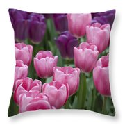 Pink And Purple Dutch Tulips Throw Pillow