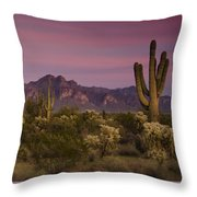 Pink And Purple Skies  Throw Pillow