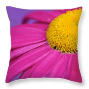 Pink And Purple Smile Throw Pillow