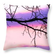 Pink And Purple Sunset Throw Pillow