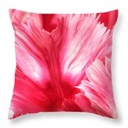 Pink And Red Parrot Tulip Throw Pillow