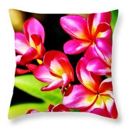Pink And Red Plumeria Throw Pillow