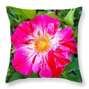 Pink And Red Striped Rose Throw Pillow