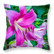 Pink And Sassy 2 Throw Pillow