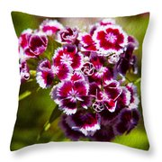 Pink And White Carnations Throw Pillow