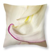 Pink And White Curve Throw Pillow
